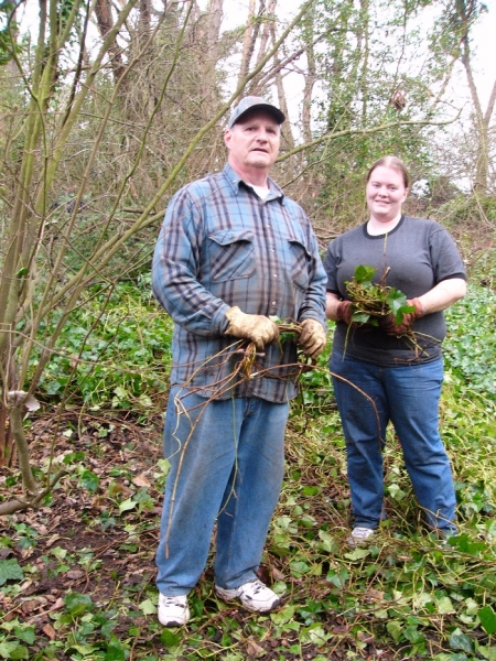 Dave Wulff and daughter Sara show how to wind up Ivy vines
